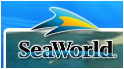 Are you a teacher in Texas? If so, get FREE admission to Sea World!