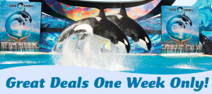 HOT Deals and Coupons for SeaWorld SanAntonio, Texas #Wildside14