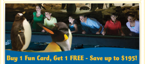 *HOT* B1G1 FREE Seaworld Fun Card (season pass) Deal #wildside14