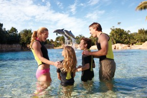 Swim with Dolphins at Sea World San Antonio
